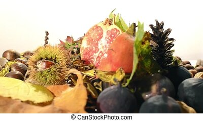 autumn fruits - autumn food rotating