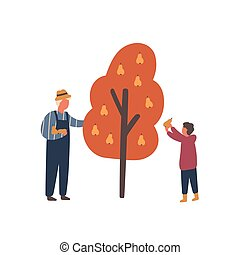 Autumn fruits harvest flat vector illustration. Old farmer ...