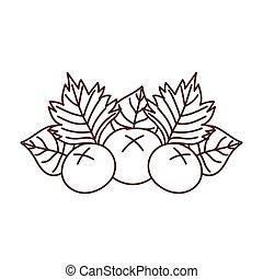 autumn fruits leaves foliage nature isolated icon design line style