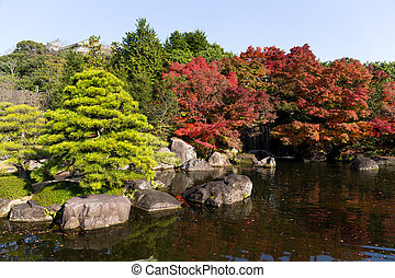 Autumn garden in Japan
