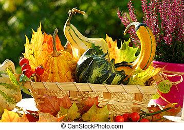 autumn garden still life