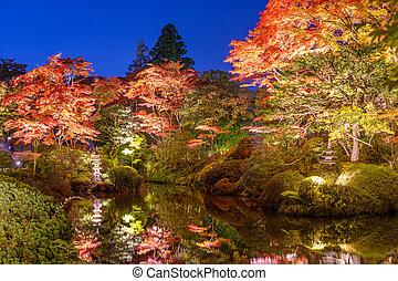 Autumn Gardens in Japan