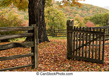 Autumn Gate and Trees