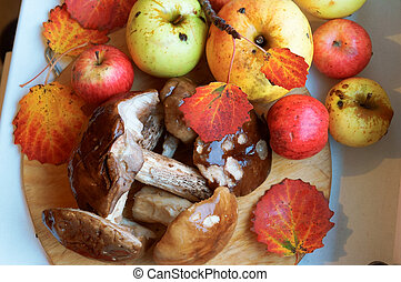 autumn gifts of nature, autumn apples and mushrooms