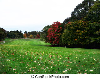 Autumn Golf