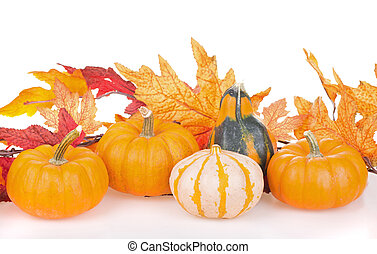 Autumn Gourd Arrangement - Arrangement of gourds with autumn...