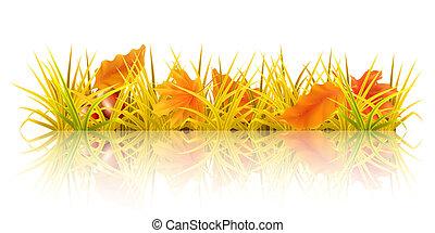 Autumn grass, 10eps