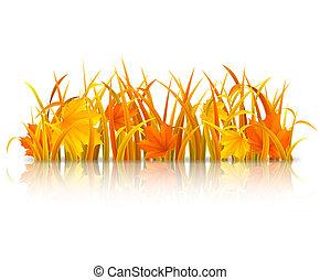 Autumn grass.