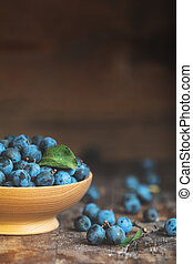 Autumn harvest blue sloe berries on a wooden table...