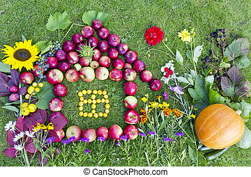 Autumn harvest concept. Collage of fruits and flowers placed on the green lawn