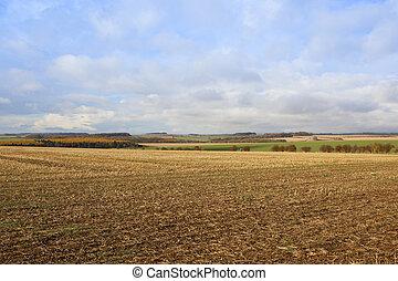 autumn harvest landscape