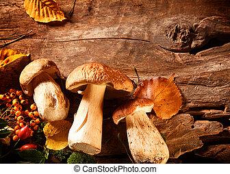 Autumn harvest of fresh porcini mushrooms
