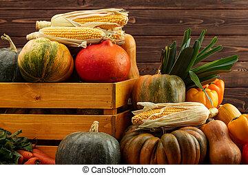Autumn harvest of pumpkins and other vegetables