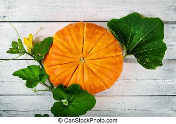 autumn harvest - pumpkin on white wooden background