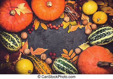 Autumn harvest pumpkin thanksgiving composition on a black background