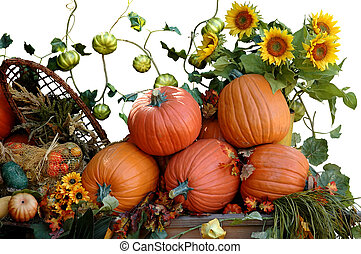 Pumpkins, sunflowers and other vegetables for Halloween harvest