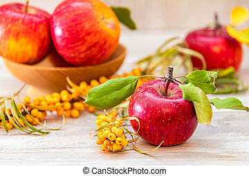 Autumn harvest red apples fruits and sea buckthorn berry on a light gray wooden table background.