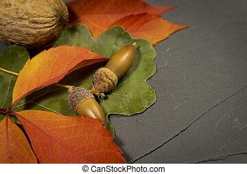 Autumn harvest side border over grunge background