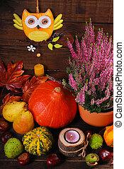 autumn harvest still life