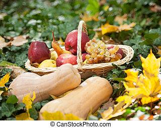 Autumn harvest vegetables outdoor