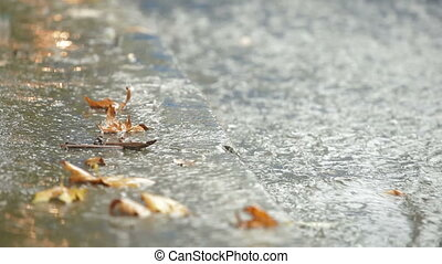 Autumn heavy rain at bus stop