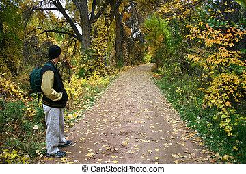 Autumn Hike