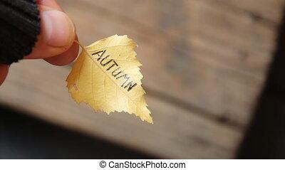 Autumn idea. Leaf and inscription.