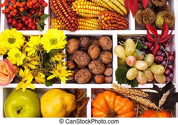 Autumn in a box