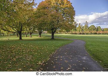Autumn in a public park Oregon state.