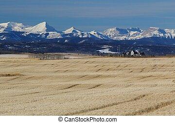 Autumn in Alberta - A farm at the foothills of Alberta,...