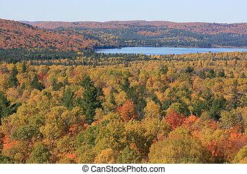Algonquin Park - Autumn in Algonquin Park, Ontario, Canada.