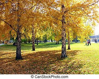 Autumn in Chelyabinsk park