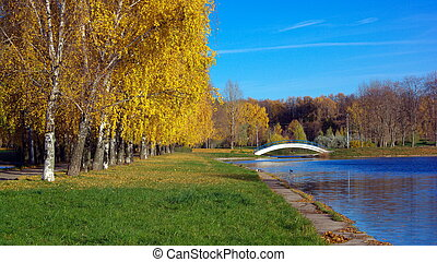 Autumn in City Park