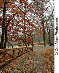 autumn in european city