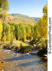 Autumn in Grizzly Creek, Colorado