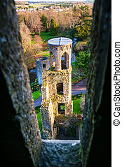 Autumn in Ireland. Aerial view of Blarney Castle