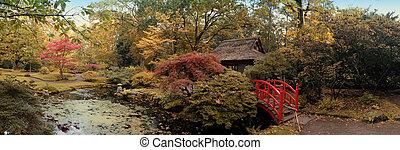 autumn in Japanese park