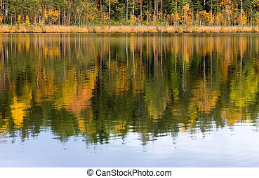 Autumn in lake