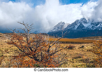 Autumn in Patagonia. The Torres del Paine National Park in the s