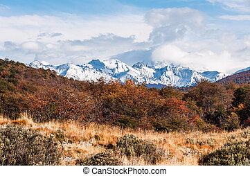Autumn in Patagonia. Tierra del Fuego,  Argentine side