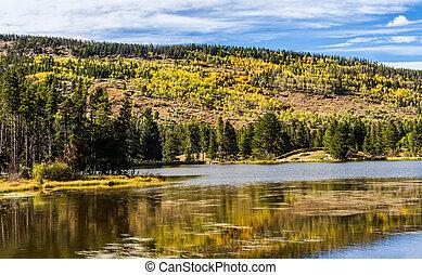 Autumn In Rocky Mountain National Park - Autumn at Sprague...