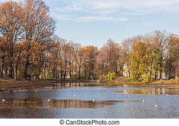 autumn in Taurian park - Autumn landscape in Taurian park of...