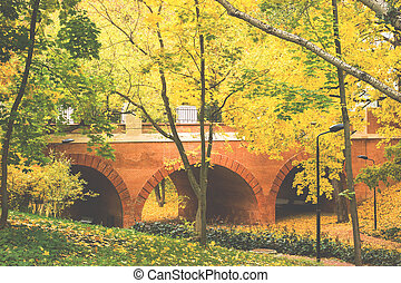 Autumn in the city Park, trees in yellow foliage.