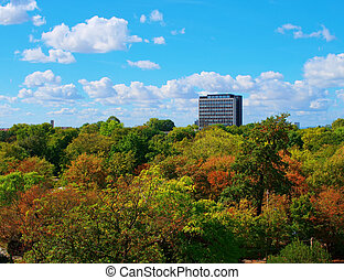 autumn in the city skyscraper surrounded by forest