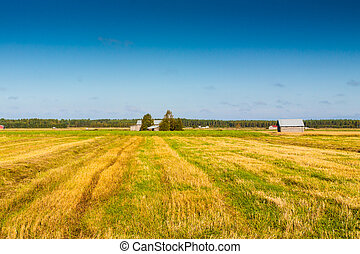 Autumn view of the fields in the rural Finland.