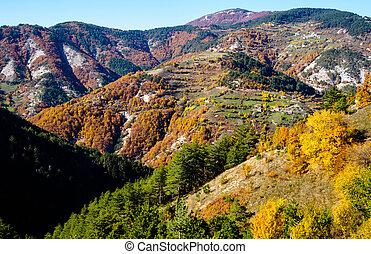 Autumn in the mountain. Bulgaria.