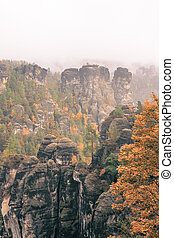 autumn in the mountain - a foggy day in the mountains