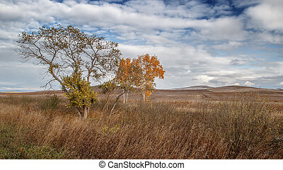 Autumn in the steppe - Missing fields. On the hills is the ...