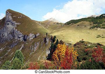 Autumn in the Tannheim Mountains - Hike through mountain...