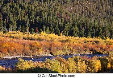 Autumn in Yellowstonw